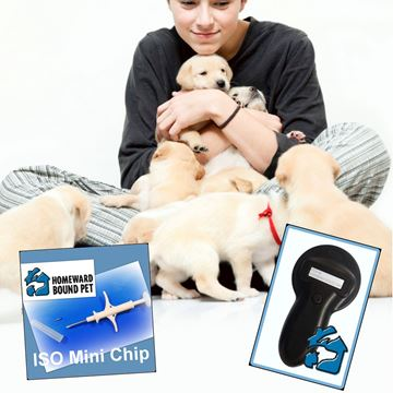 Picture of Starter Kit - 20 Microchips & Scanner